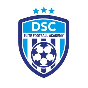 dsc menu logo