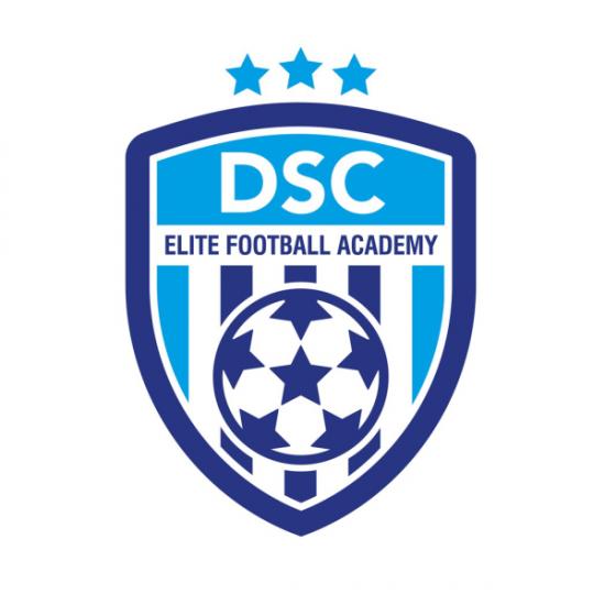DSC Academy