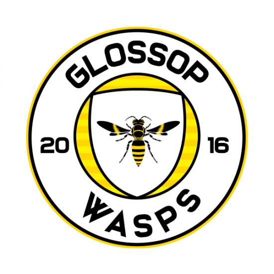 Glossop Wasps