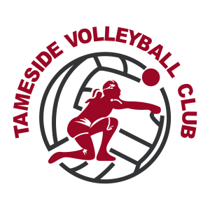 tamesdie volleyball menu logo